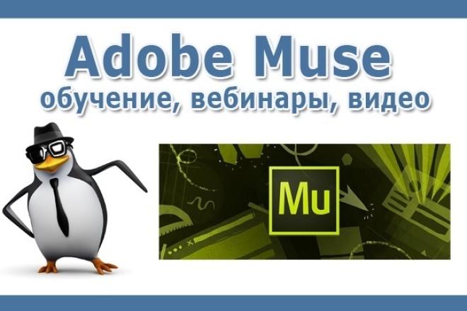 Adobe Muse все для обучения. Видеокурсы, тренинги, шаблоны 1 - kwork.ru