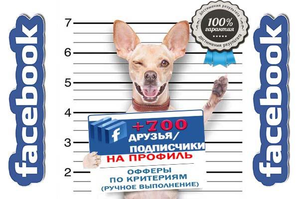 Друзья подписчики Facebook 1 - kwork.ru