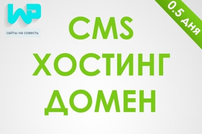 установлю CMS + хостинг и домен 1 - kwork.ru