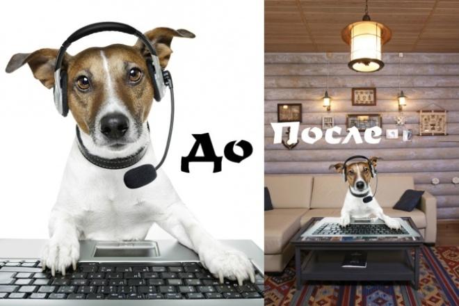 Уберу или заменю любой фон на 30 ваших фотографиях 1 - kwork.ru