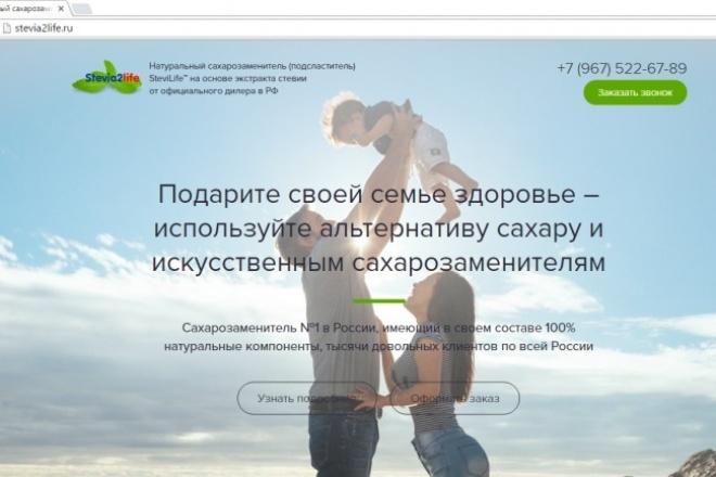 Сделаю копию одностраничника (лендинга) любой сложности 1 - kwork.ru