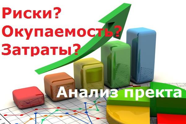 Рассчитаю доходность интернет проекта 1 - kwork.ru