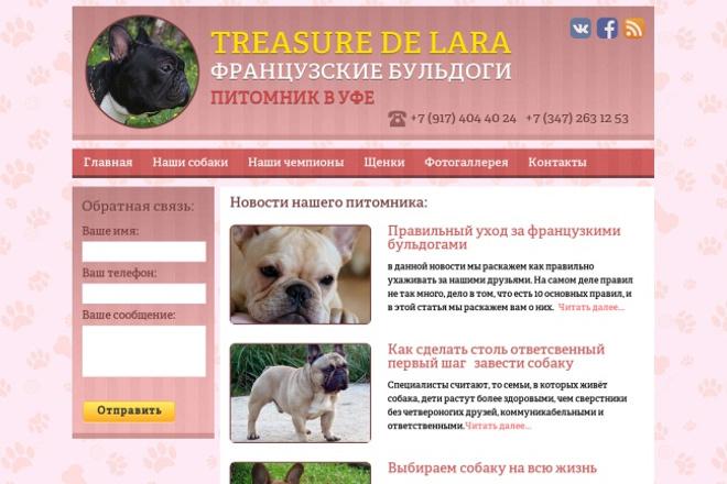 Дизайн главной страницы для веб сайта 1 - kwork.ru