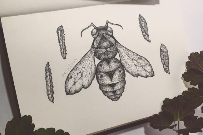 Рисую эскизы татуИллюстрации и рисунки<br>Индивидуальная разработка эскиза тату в стиле dotwork на заказ, в срок от 1 до 3 дней, в зависимости от сложности эскиза.<br>