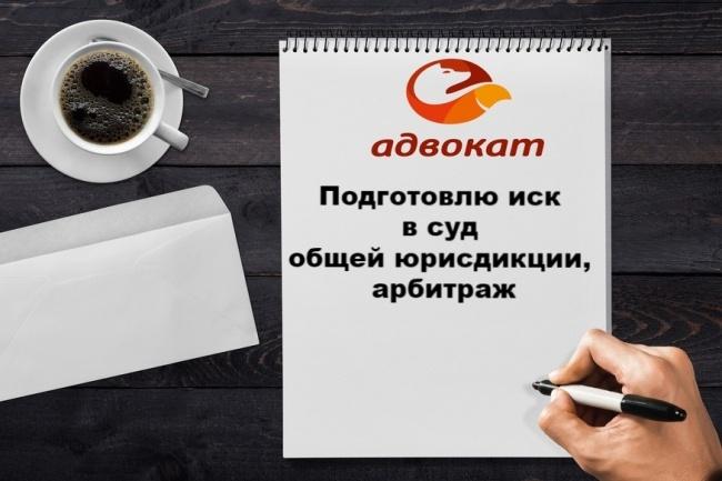 Составлю иск в суд общей юрисдикции, арбитраж, отзыв на иск 1 - kwork.ru