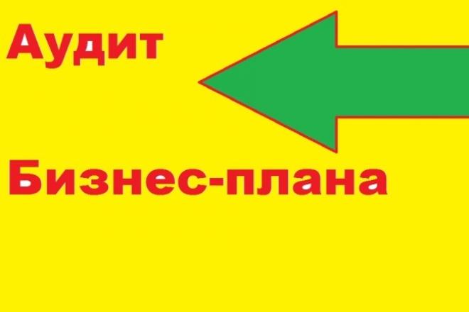 Аудит  Вашего бизнес-плана. Детальный анализ слабых и сильных сторон 1 - kwork.ru