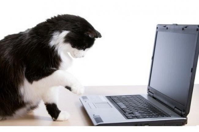 Оцифровка текстаНабор текста<br>Оцифровка сканов (фотографий) как рукописного, так и печатного текста, в том числе и с формулами. Результат в удобном для Вас виде: Документ MS Word Таблица MS Excel LaTeX файл ... или Ваши пожелания Также возможен набор текста по аудио/видео записи. При заказе заказе дополнительных 12000 знаков (1 часа 12 минут видео/аудио) предоставляется бонус в объеме 3000 знаков (18 минут).<br>