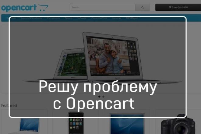 Решу проблемы с Opencart 1 - kwork.ru