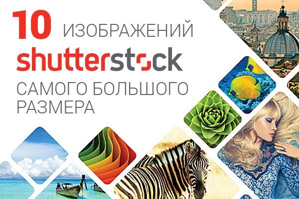 10 изображений с shutterstock в максимальном качествеГотовые шаблоны и картинки<br>Скачаю любые 10 изображений с shutterstock.com самого большого размера. Фото, иллюстрации, векторные изображения, иконки и даже логотипы для вашего сайта. Являюсь официальным партнером Shutterstock и лицензию на распространение материала, который остается неиспользованным.<br>