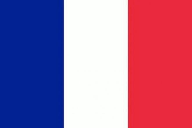 Premium перевод на Французский и с Французского языка. Носители языка 1 - kwork.ru