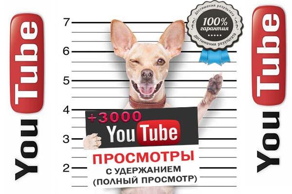 Просмотры 1 - kwork.ru