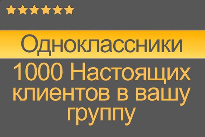 1000 настоящих клиентов в группу Одноклассники 1 - kwork.ru