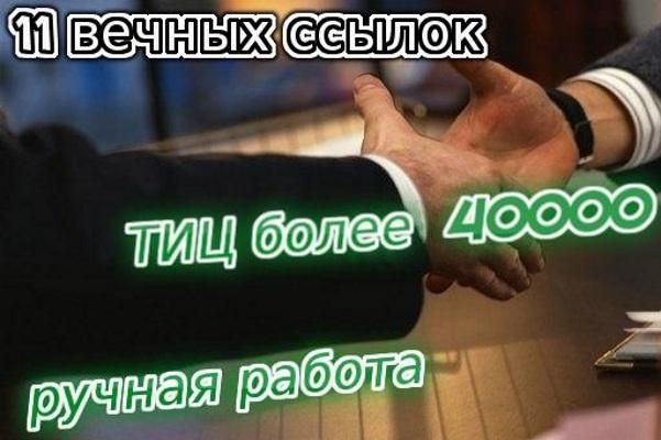 11 вечных ссылок с ТИЦ от 1700 каждая, ручная работа 1 - kwork.ru