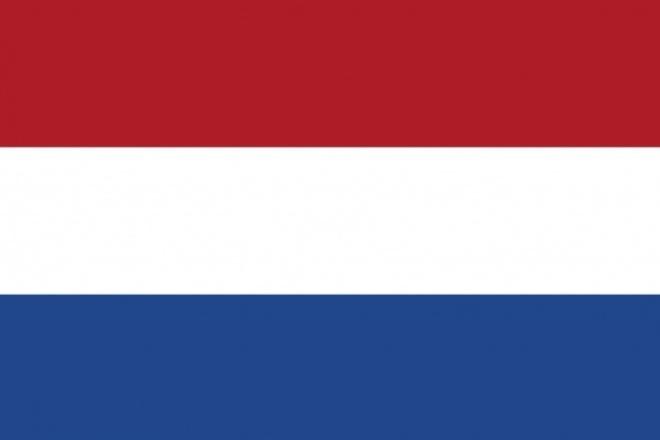 Помогу с визой в Нидерланды 1 - kwork.ru
