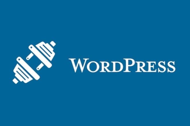 установлю и настрою сайт или блог на WordPress 1 - kwork.ru