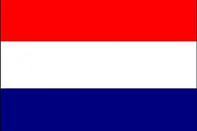 Premium перевод на Голландский и с Голландского языка. Носители языка 1 - kwork.ru