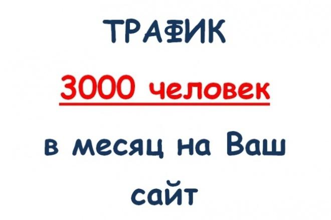 3000 на Ваш сайт 1 - kwork.ru