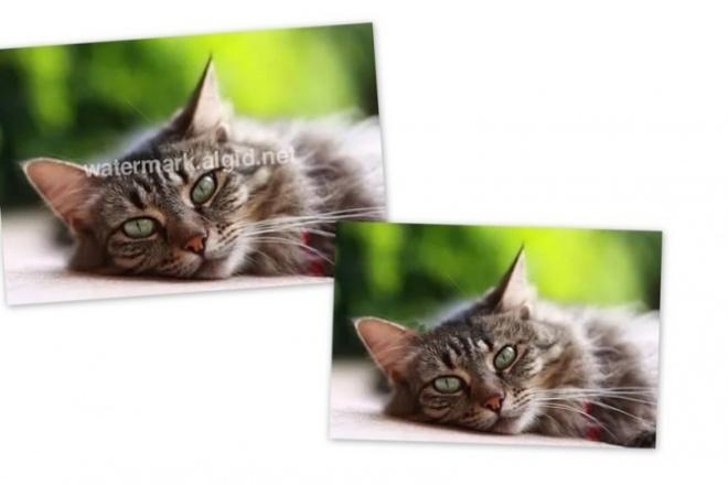 Уберу водяной знакОбработка изображений<br>уберу водяной знак с любой фотографии,также возможна ретушь (контраст,резкость и т.д.)<br>