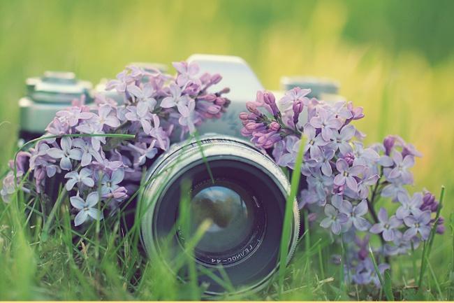Сделаю фото с обработкой в хорошем качестве 1 - kwork.ru