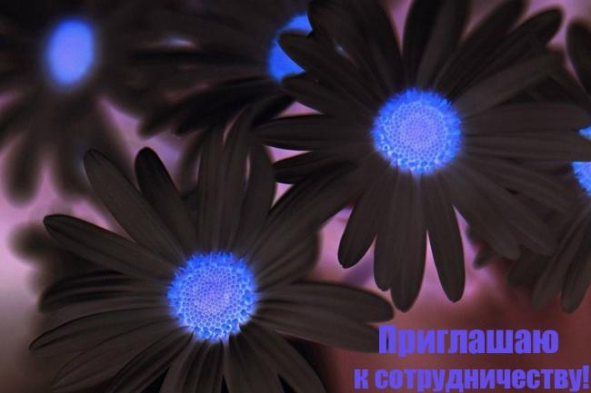 сделаю обтравку 20 фотографий 1 - kwork.ru