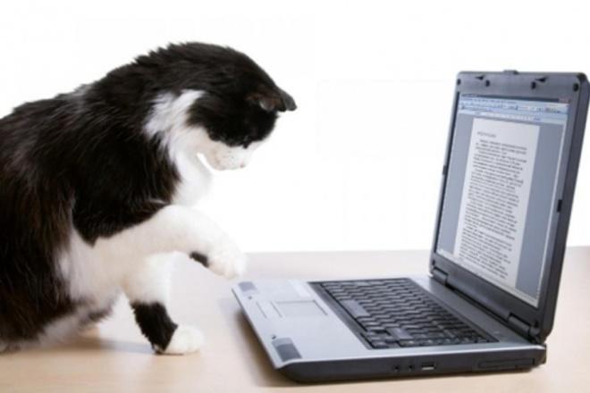 Наберу текстНабор текста<br>Наберу для вас текст любой сложности с любого нетекстового формата. Скорость печати - от 400 символов минуту.<br>