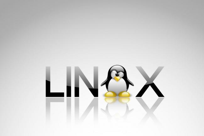 Настройка  окружения для работы веб-сайтов сервере с Linux 1 - kwork.ru