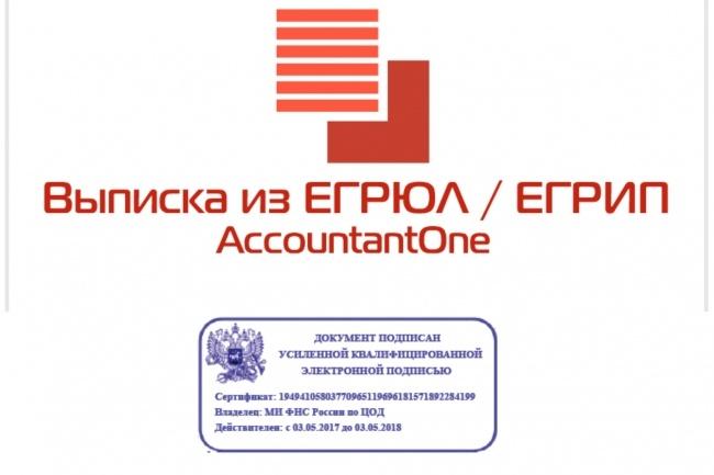 Выписка из егрюл, егрип онлайн с ЭЦП 1 - kwork.ru