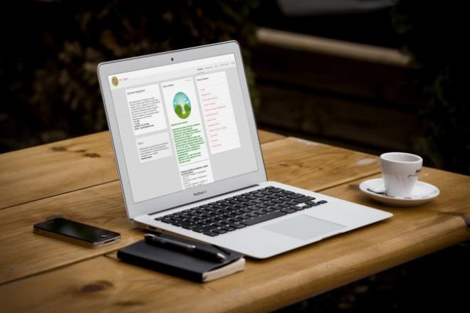 сотворю для вас современный WEB дизайн 4 - kwork.ru