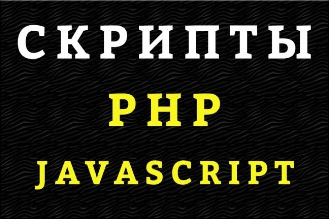 Напишу скрипт на PHP, JS 1 - kwork.ru