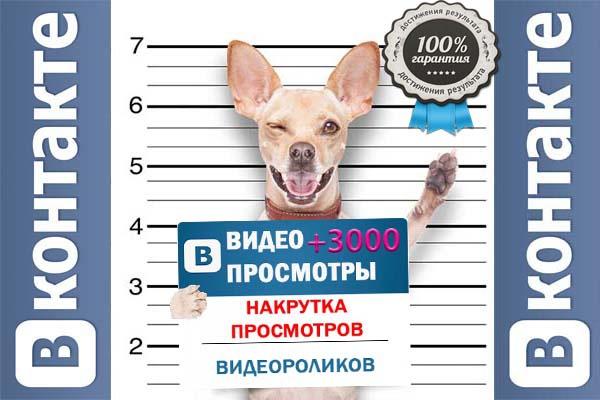 Просмотры вконтакте 1 - kwork.ru