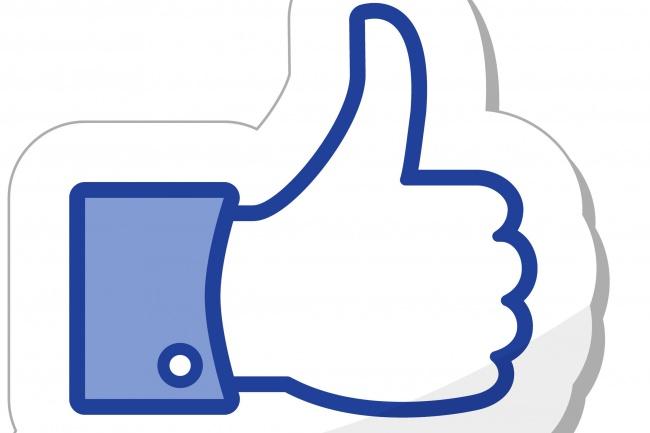 За день 100 живых участников в сообщество Facebook 1 - kwork.ru