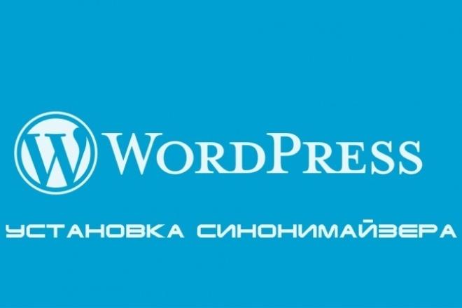 Установлю Синонимайзер на ваш WordPress сайт 1 - kwork.ru