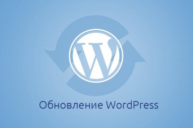 Полное обновление WordPress 1 - kwork.ru