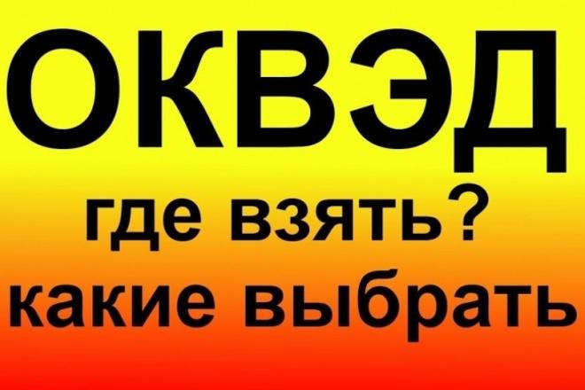 Подбор кодов оквэд для ИП И ООО 1 - kwork.ru