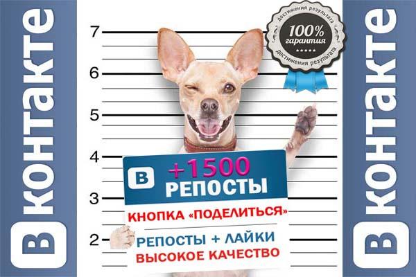 Репосты 1 - kwork.ru