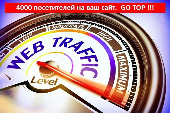 Приведу на Ваш сайт 4000 посетителей 1 - kwork.ru
