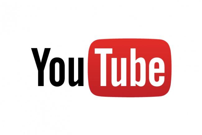 Скачаю видео с YouTube, VKонтакте 1 - kwork.ru