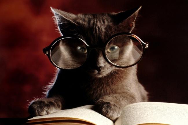 Отредактирую текстРедактирование и корректура<br>Здравствуйте. Предлагаю редактирование и корректировку текстов. Исправление грамматических, пунктуационных ошибок и т.п. Качественно и в короткие сроки выполню Вашу работу.<br>