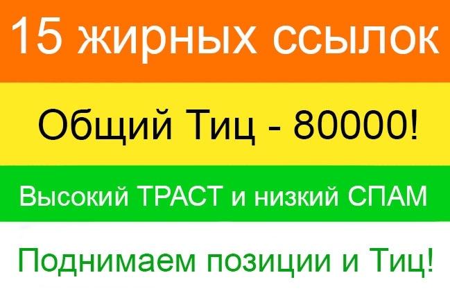 15 очень жирных ссылок с трастовых сайтов. ТИЦ 80000, Большой траст 1 - kwork.ru