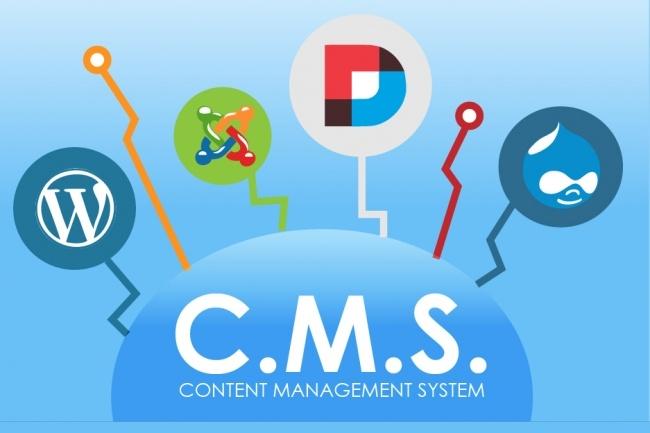 Проверю все существующие домены зон RU, SU, РФ на признаки различных CMS 1 - kwork.ru