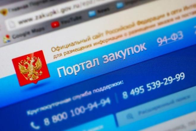 Предоставлю консультации по участию в государственных закупках 1 - kwork.ru