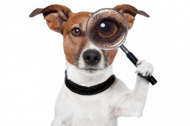 Поиск товара, изображений, производителяПерсональный помощник<br>Есть только фото товара? Желаете иметь больше информации о товаре? Буду рад найти её для Вас! В услугу поиска информации включены: - 1 (одна) шт товарная позиция, - фото (наилучшее качество), - производитель/дистрибьютер, контакты.<br>