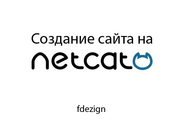 Создание сайта на CMS Netcat 1 - kwork.ru