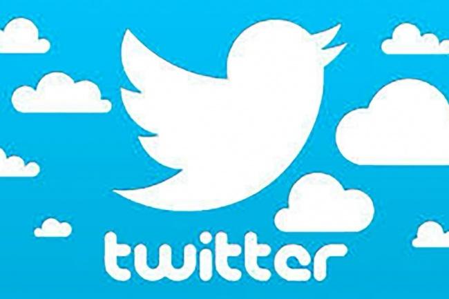 1700 подписчиков в ваш аккаунт Twitter 1 - kwork.ru