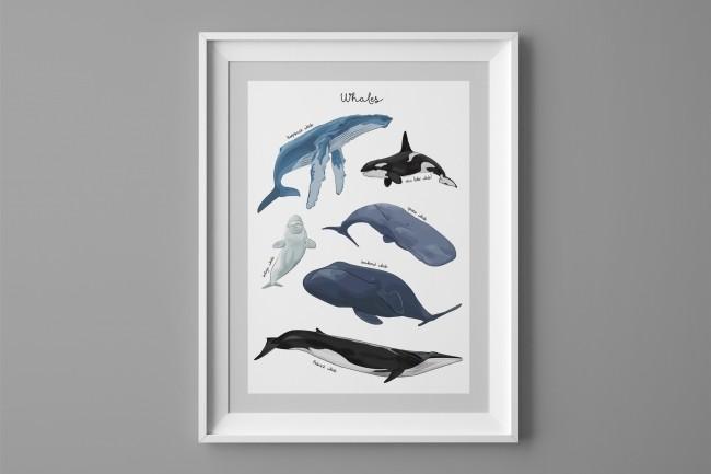 Нарисую плакат, афишу или постер 1 - kwork.ru