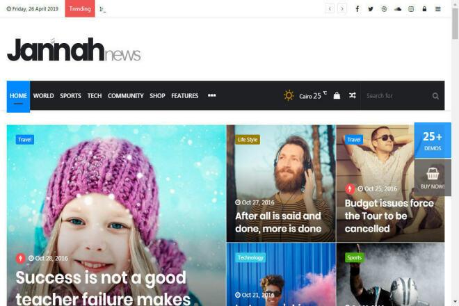 Создам блог, журнал или новостной портал на Wordpress 1 - kwork.ru