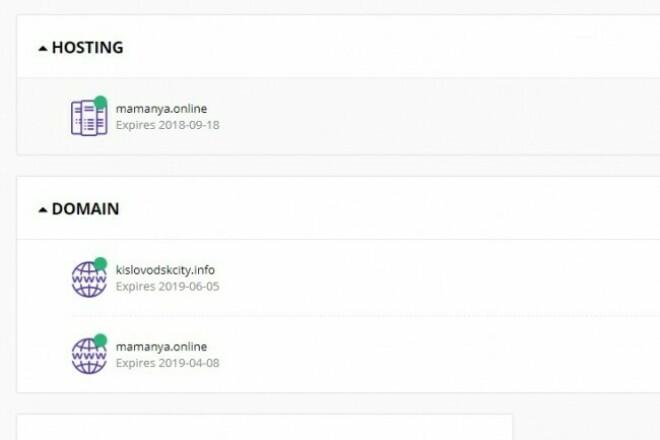 Организую хостинг вашему сайту 1 - kwork.ru