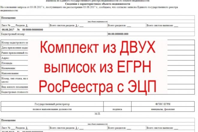 2 выписки из ЕГРН. Об основных характеристиках и о переходе прав 1 - kwork.ru