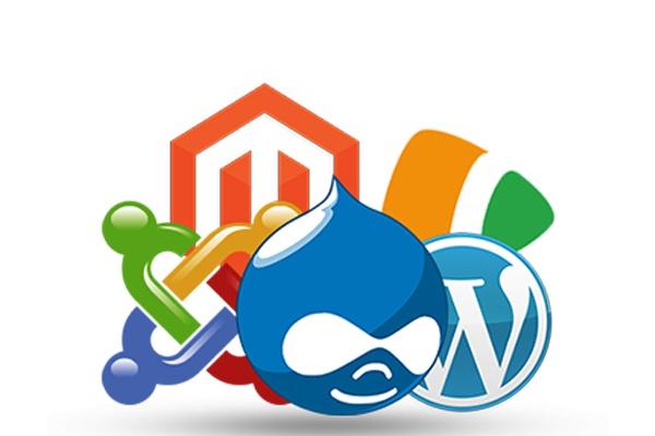 Установлю любой скрипт на хостингАдминистрирование и настройка<br>Установлю на хостинг любой php скрипт (Joomla, Wordpress, DLE и др.). Возможны и другие работы по сайту.<br>