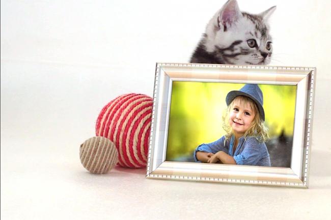 Слайд-шоу с забавными котятамиСлайд-шоу<br>Создам слайд-шоу с Вашими фотографиями и забавными играющими котятами по шаблону. Видеоролик с разрешением 1920*1080 и продолжительностью 2:06 мин. 16 фото. Пример: http://yadi.sk/i/Suf4pz913MfwwP<br>